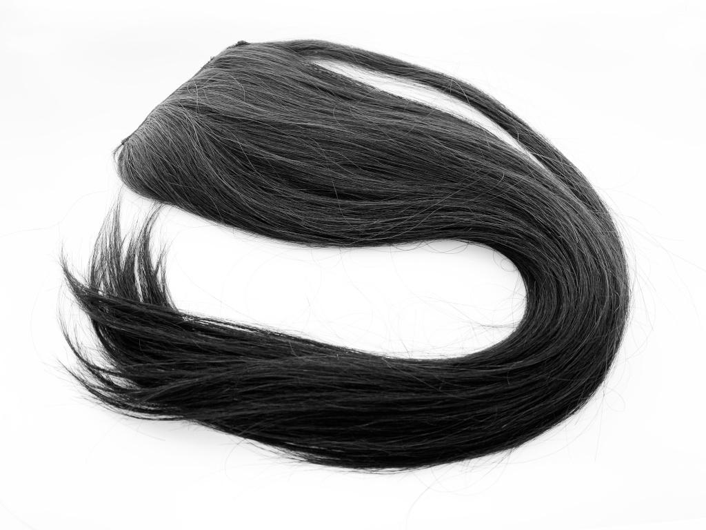 asia_ponytail_1