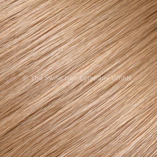 Asiatische Schnitthaar Tape Extensions - glatte Struktur - 55/60cm - Farbe 10